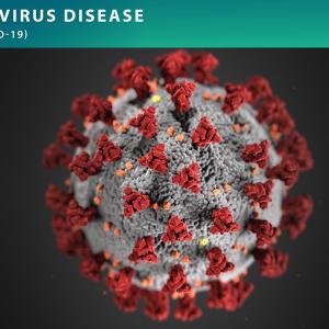 มาตรการรองรับการแพร่ระบาดของเชื้อไวรัสโควิด-19 (COVID-19)